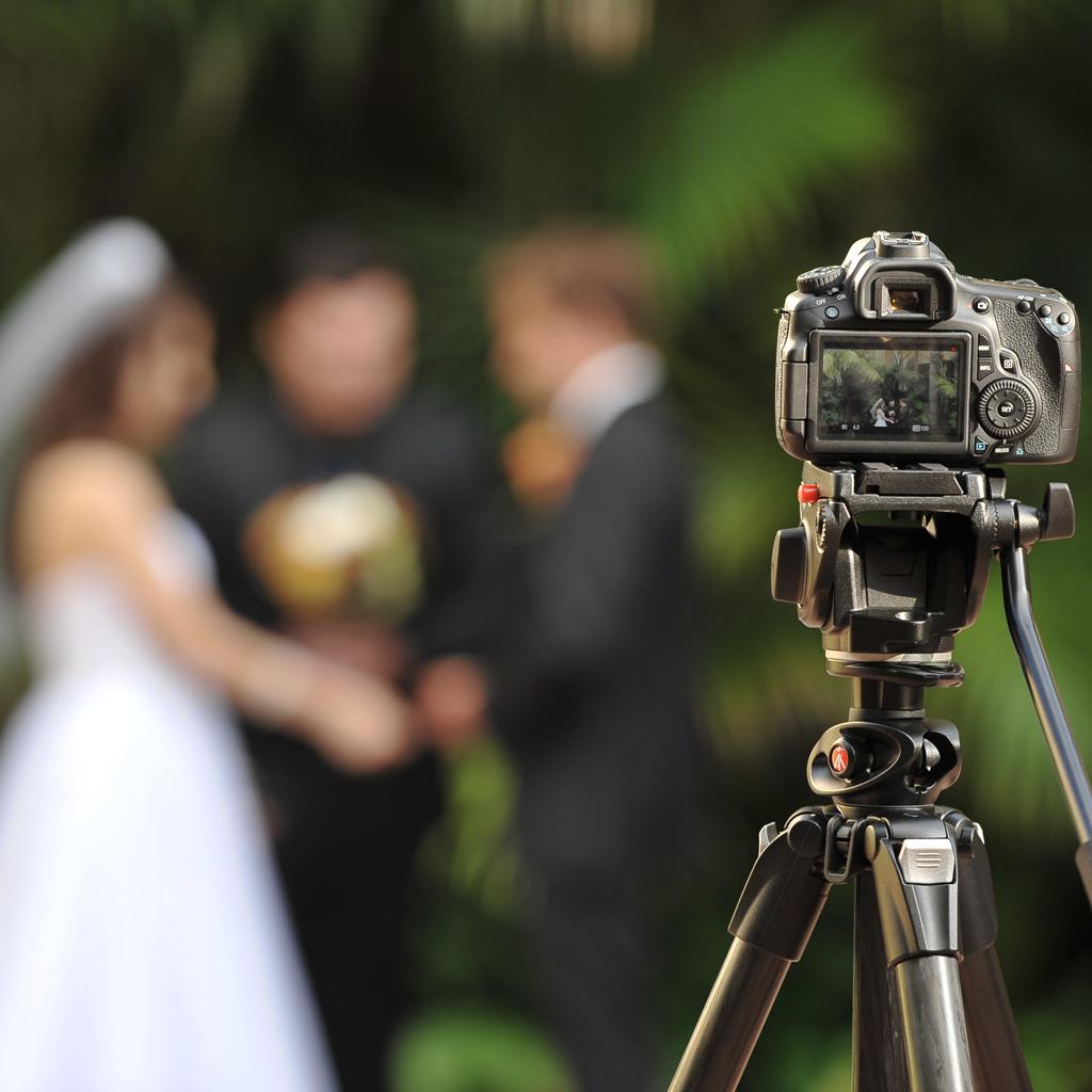 порода на какую оптику снимают свадебные фотографы чеснок очищаем